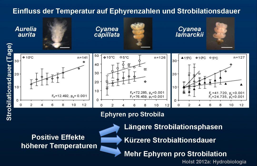 Einfluss Temperatur deutsch