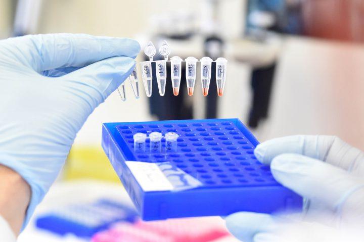Arbeit in der DNA-Bank