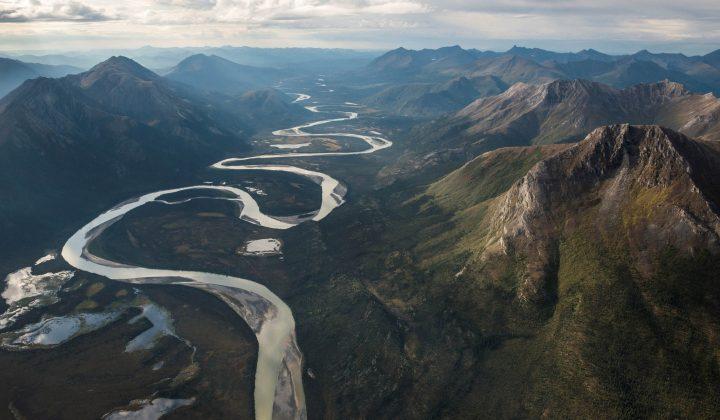 Biodiversität und Erdsystemdynamik