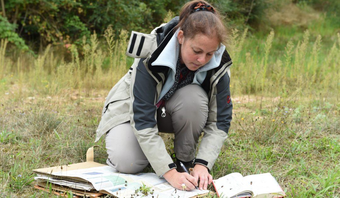 Biotopkartierung Feldforschung