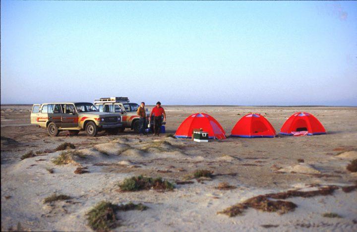 Marine Evertebraten II Forschung 11 Camp Pers Golf
