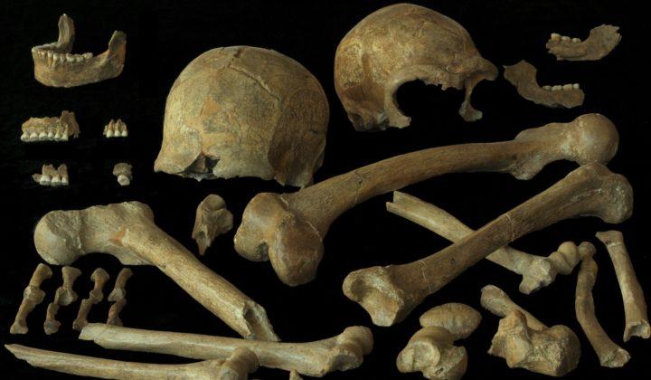 Neanderthal Knochen aus Spy