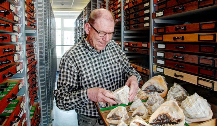 Sammlung Malakologie Dr. Ronald Janssen