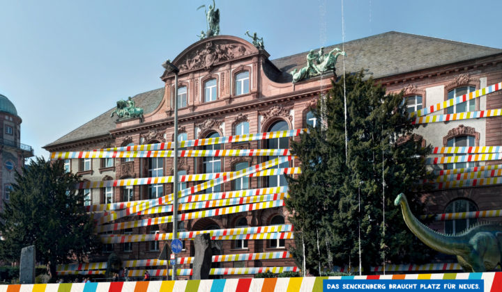 Fundraising Kampagne Neues Museum Grafik