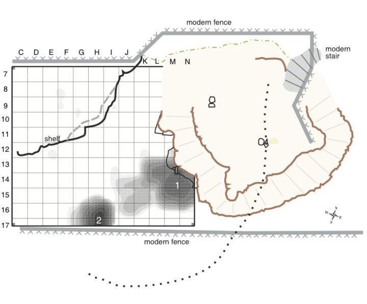 Paläoherpetologie Forschung