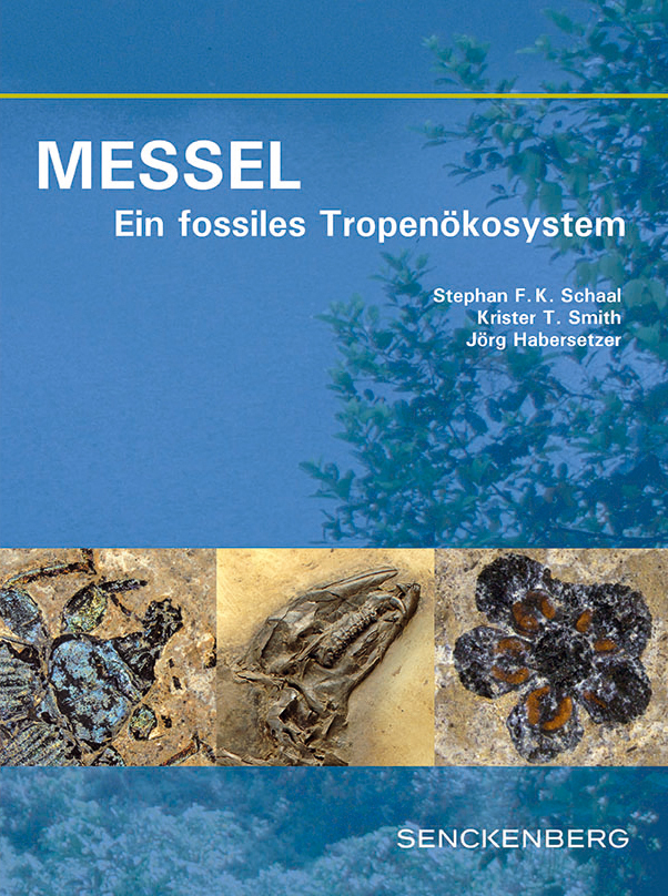 SNG_Messel_Cover_de_final.indd
