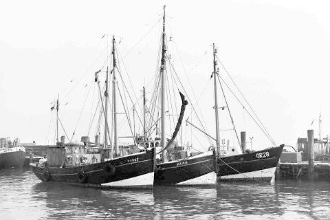 DZMB Forschungsflotte