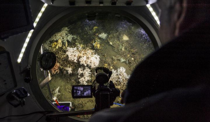 DZMB Meeresgeologie
