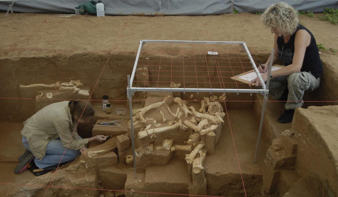 Blick auf die Grabung Untermaßfeld mit Graphikerin bei der Dokumentation der Funde in einem Planquadrat