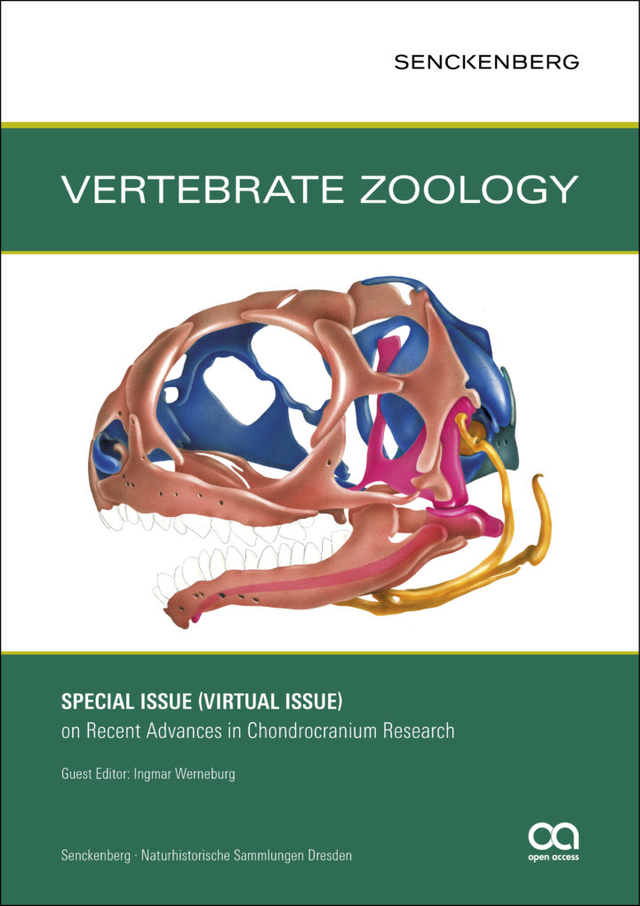 Cover VZ Virtual-Issue 2019