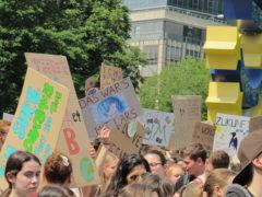 Fridays for Future Klimastreik Frankfurt