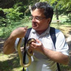 Arcadio Herpetologie