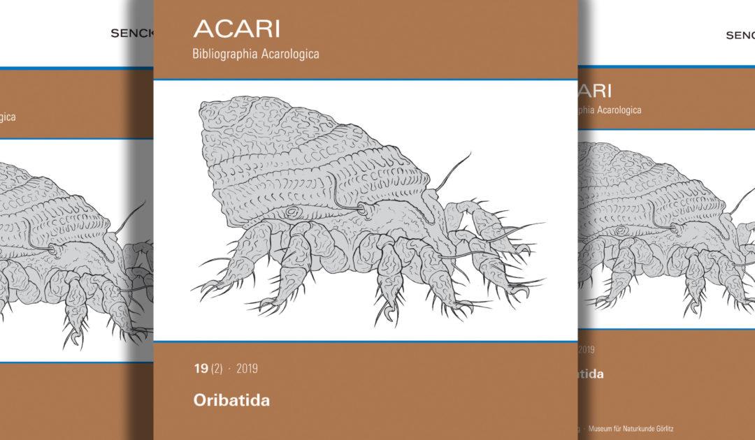 Acari header Bild