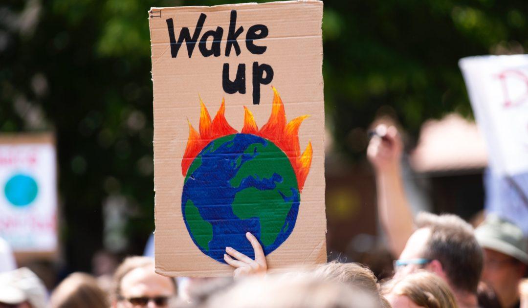 Klima Streik Bild