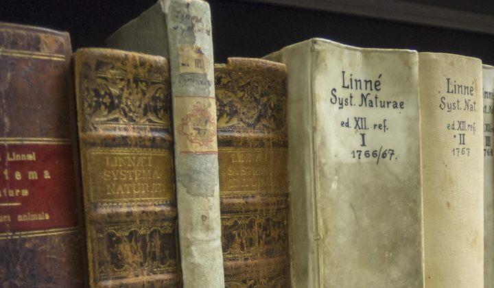 SDEI Entomologische Bibliothek Müncheberg