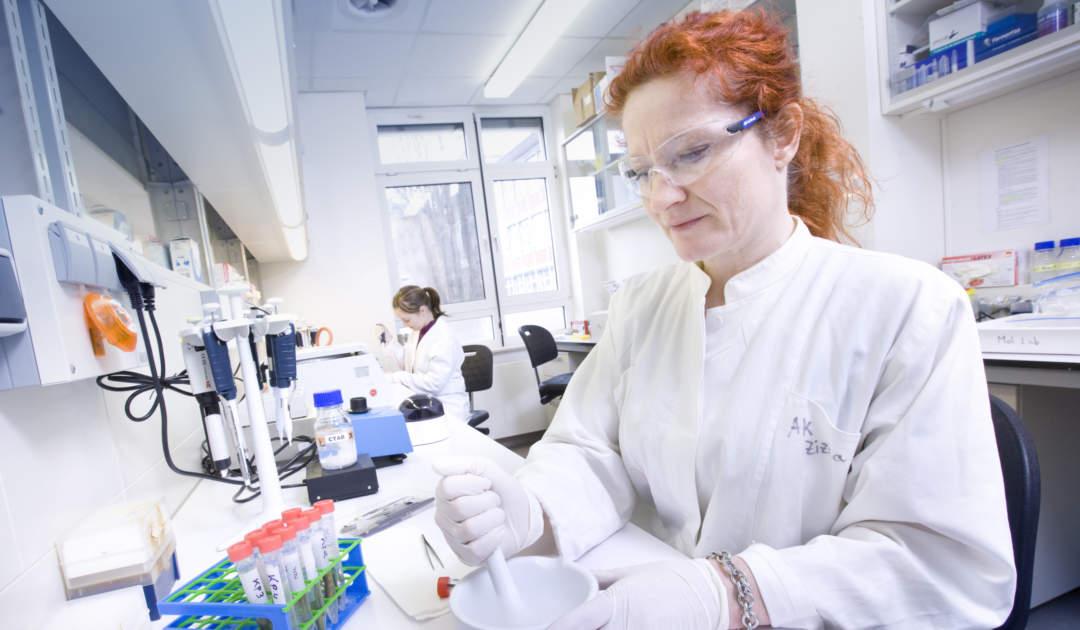 Grunelius-Möllgaard-Labor Bilder
