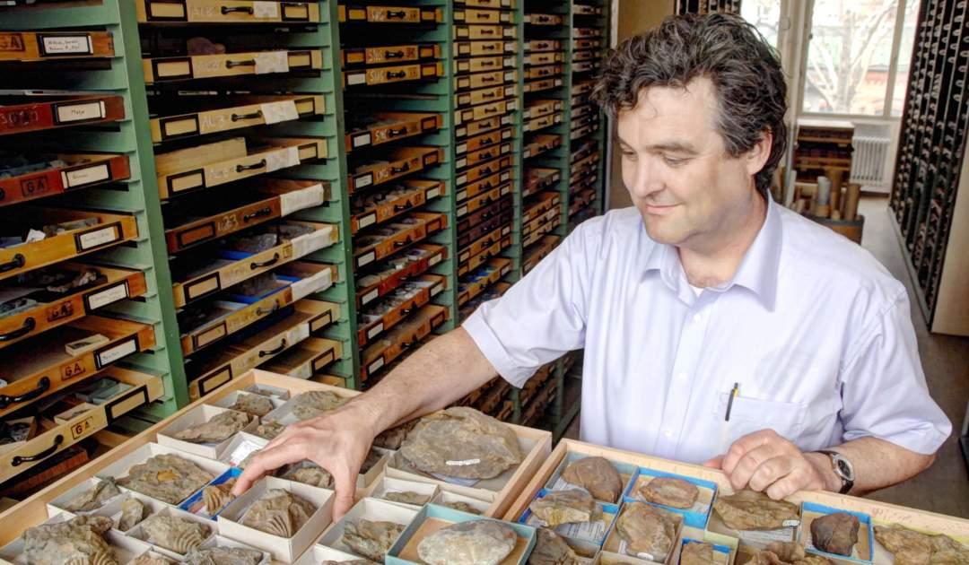 Paläozoologie III Sammlung