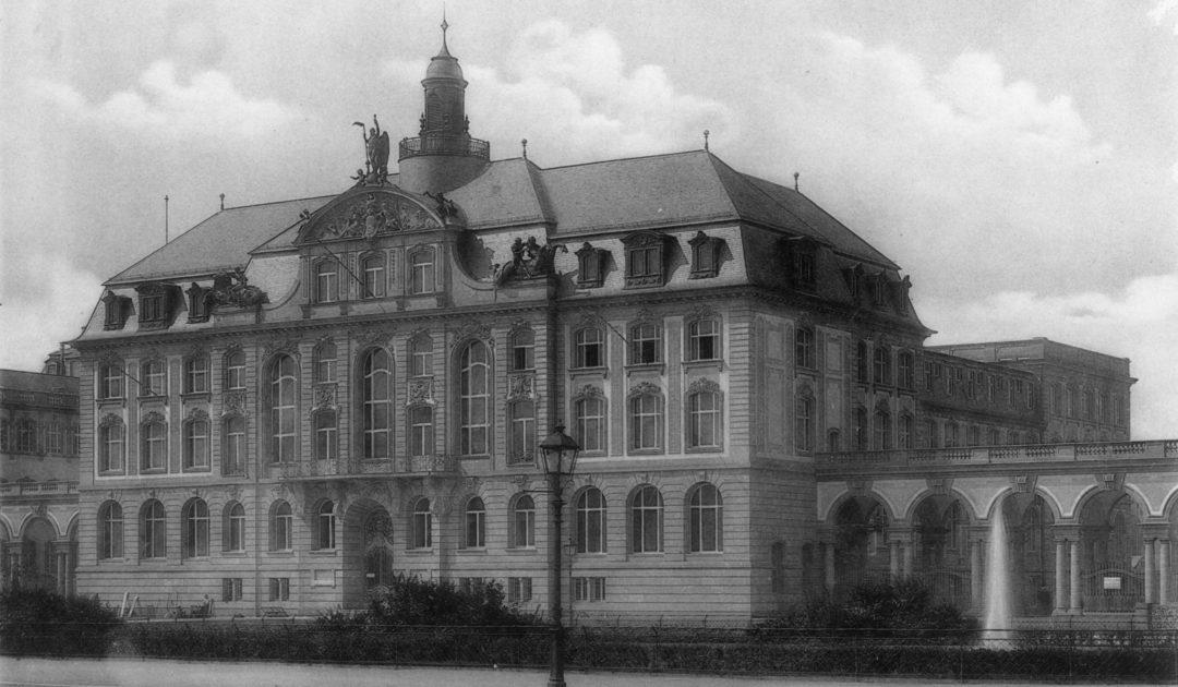 Senckenberg Naturmuseum Frankfurt historisch