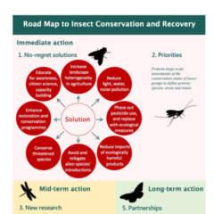 PM Insektenschutz 7.1.2020