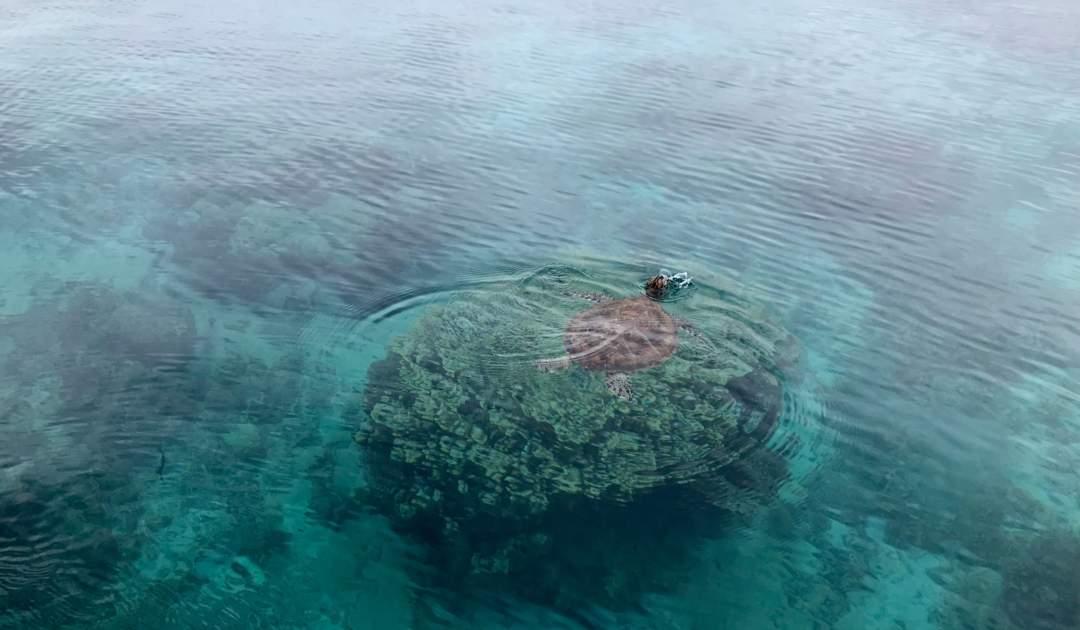 Ozeane im KIimawandel