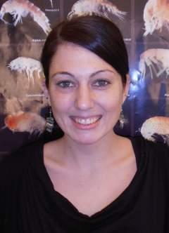 Mitarbeiterbild Dr. Anja Singer