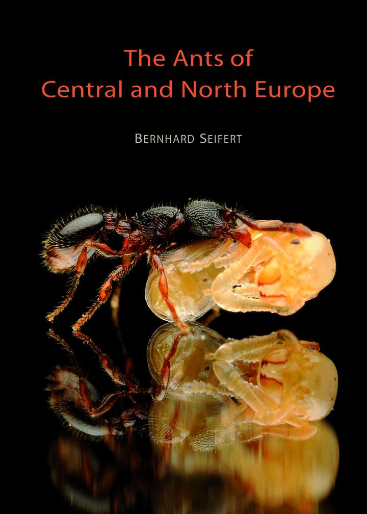 The Ants of Central and North Europe