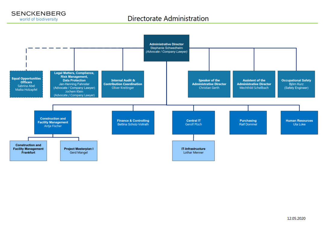 Organigramm 2020 Administration