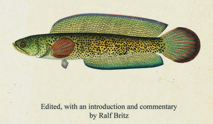 Francis Hamilton's Gangetic Fishes in Colour