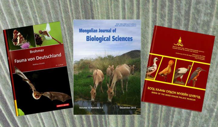 Publikationen Mammalogie Görlitz