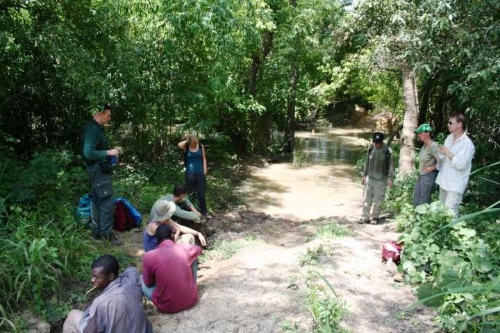 Botanik SF: Geländearbeit in Westafrika