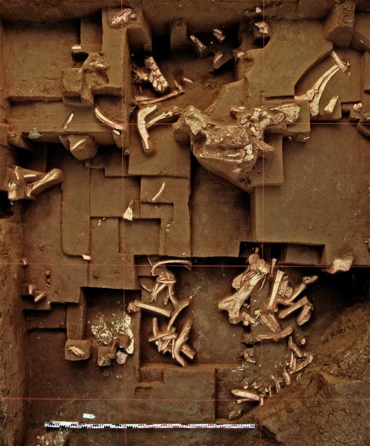 Blick auf eine Grabungsfläche in Untermaßfeld