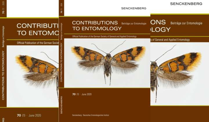 SDEI Contributions to Entomology - Beiträge zur Entomologie 2020 Heft 1