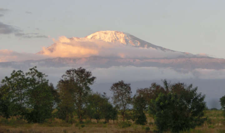 pm Großprojekt am Kilimandscharo 3.7.2020