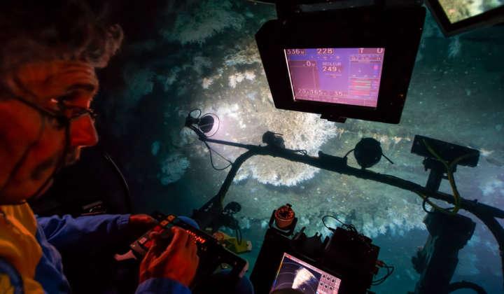 Mit dem Tauchboot am Kaltwasserkorallenriff