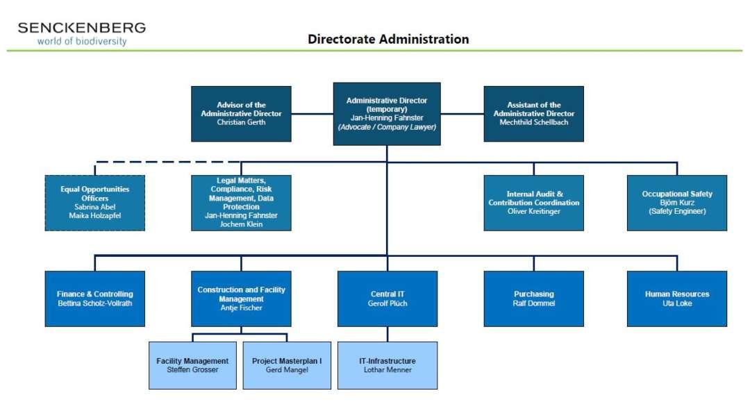 Administration Organigramm