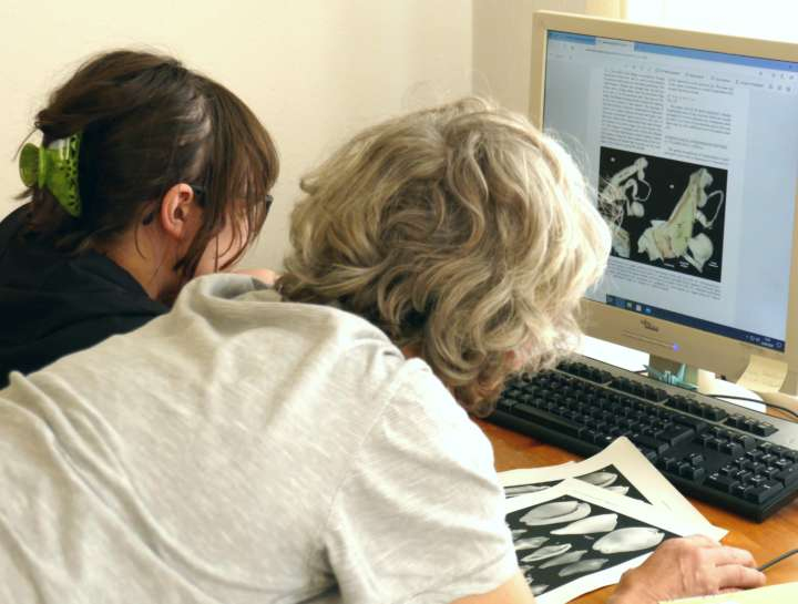 Two malacologists studying computer screen
