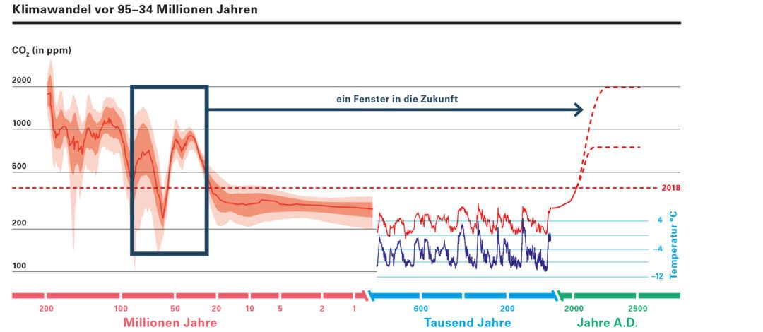 201221-NFM 1-13-21-Online-RZ-v2.indd