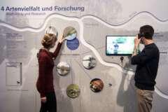 Ausstellung Flüsse 12 Artenvielfalt u Forschung c Senckenberg Tränkner