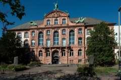 Senckenberg Naturmuseum Frankfurt 2020_3