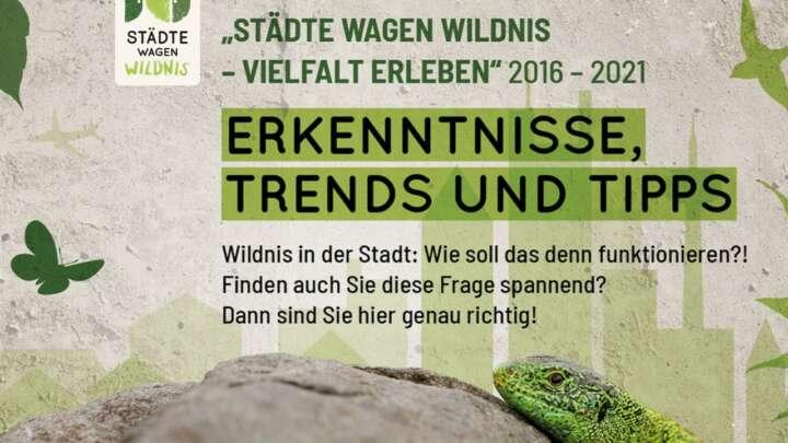 Städte wagen Wildnis: Homepage