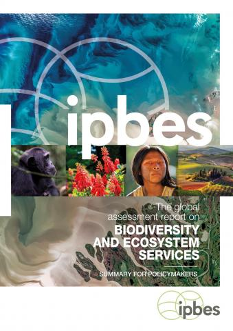 Cover IPBES Global Asssessment 2020
