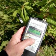 Messung der Chlorophyllfluoreszenz