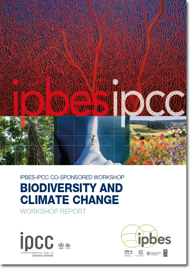 IPBES Cover Workshop Biodiversity and Climate Change