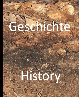 Bodenzoologie Geschichte 2